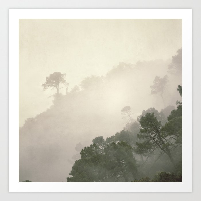 """Mountain light II"".(C) Foggy forest. Art Print"