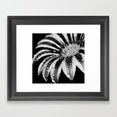 flower bw Framed Art Print