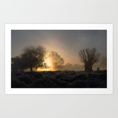 First Light Art Print