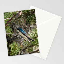 Blue Swallow Photography Print Stationery Cards