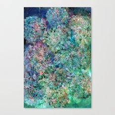 Banksia Cool Blue Canvas Print