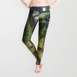 Tire Swing in a Tropical Place Leggings