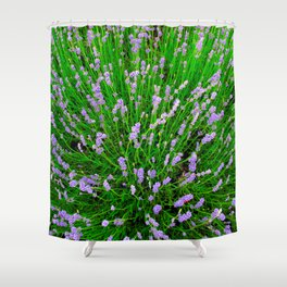 Lavender Close Up Shower Curtain