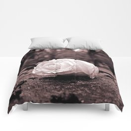 Forever yours Comforters