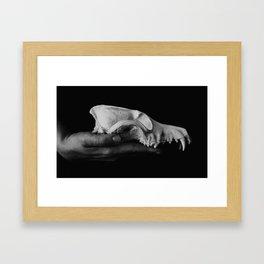 Canis Latrans II Framed Art Print