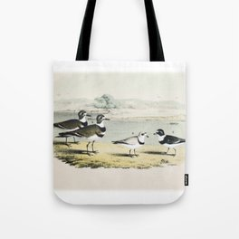 PLATE XL The Killdeer Plover The piping Ringed Plover The Semi-palmated, Ring, or Ring-neck Plover Tote Bag