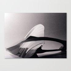 Paper Sculpture #2 Canvas Print