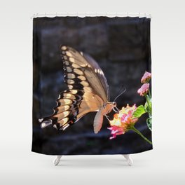 Swallowtail Overexposed Shower Curtain