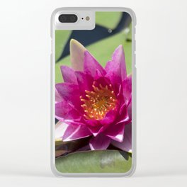 Longwood Gardens - Spring Series 305 Clear iPhone Case