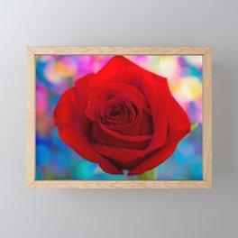 Red Rose and Rainbow Bokeh Framed Mini Art Print