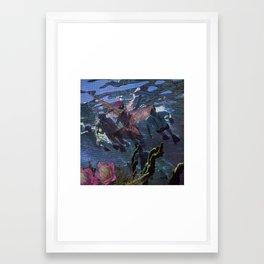 Seabird Framed Art Print