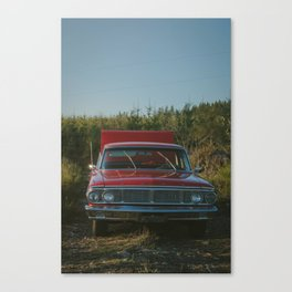 Galaxie Canvas Print