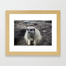 What? I like digging, ok? Framed Art Print