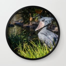 Shoebill in Grass Wall Clock