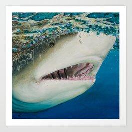 Lemon Shark Art Print