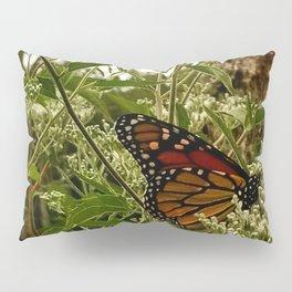 Feeding butterfly Pillow Sham