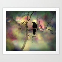 Crow Dreams In Colors Art Print