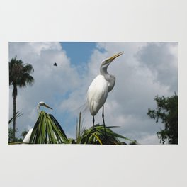 Dino Bird Rug