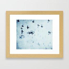 birds II Framed Art Print