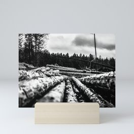 Poltery Site (Wood Storage Area) After Storm Victoria Möhne Forest 6 bw Mini Art Print