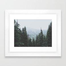 Forest Window Framed Art Print