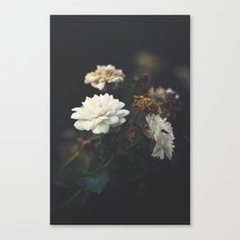 You're the One I Dream About Canvas Print