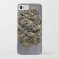 medical iPhone & iPod Cases featuring Bordello Medicinal Medical Marijuana by BudProducts.us