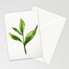 Leaf 3 Stationery Cards