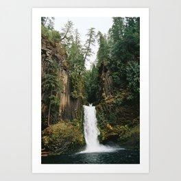 Toketee Falls  Art Print