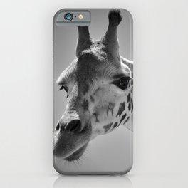 Giraffe Photography   Black and White   Animal   African   African Art   Safari   Travel iPhone Case