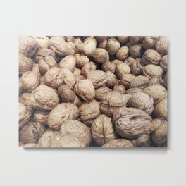 walnuts with shell Metal Print