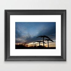 Still Flight Framed Art Print