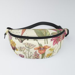 Adolphe Millot - Bromeliacees - liliacees - French vintage botanical illustration Fanny Pack