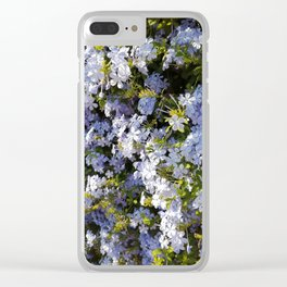 a violet flower in the heart of Athens Clear iPhone Case