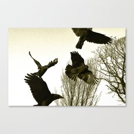 Flight of Crows  Canvas Print