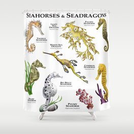 Seahorses and Seadragons Shower Curtain