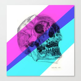 Skull pencil drawing with colour Canvas Print