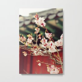 Spring Changdeokgung palace, Seoul, Korea Metal Print
