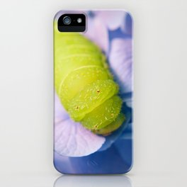 Actias Luna Larva on Hydrangea Nature Photo iPhone Case