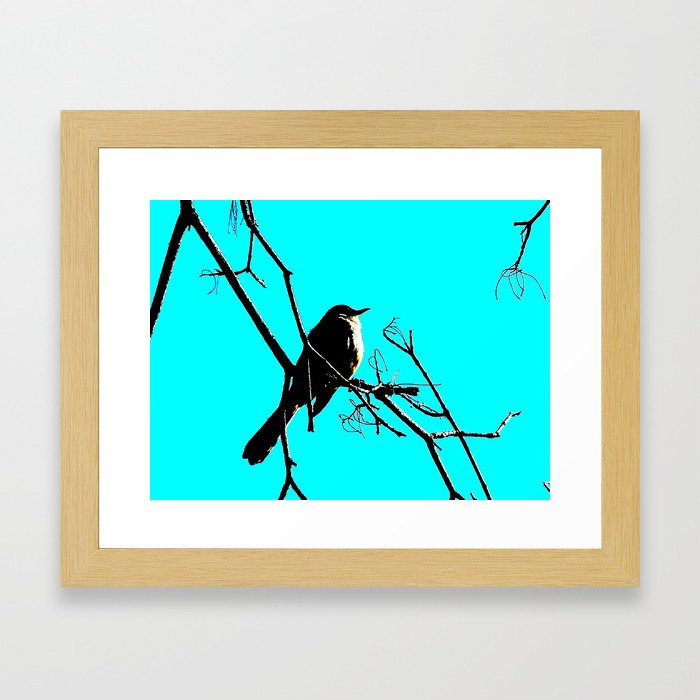 aqua bird Framed Art Print