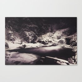 Frozen Seclusion Canvas Print