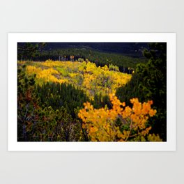 Window Into Fall Art Print