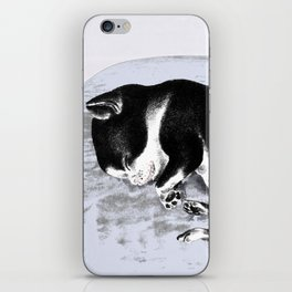 Sweet dreams are made of this iPhone Skin