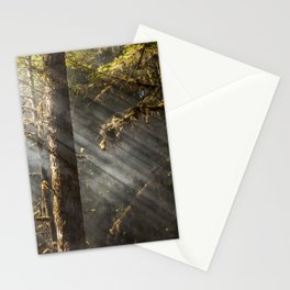Beautiful Trees / 2 Stationery Cards