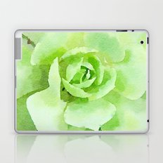 Lime Succulent Plant Laptop & iPad Skin