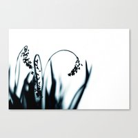 grace Canvas Prints featuring grace by Ingrid Beddoes