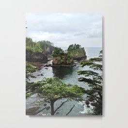 Sea Stacks at Cape Flattery  Metal Print