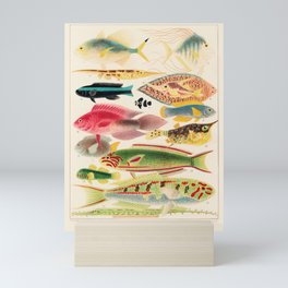 Great Barrier Reef Fishes from The Great Barrier Reef of Australia Identification Chart by William Saville-Kent Mini Art Print