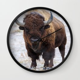 In The Presence Of Bison Wall Clock
