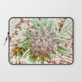 Flower Star Blooming Bud Indoor Hydro Grow Room Top Shelf Laptop Sleeve